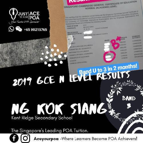 Ng Kok Siang Ace Your POA Tuition Band 3 N level 2019